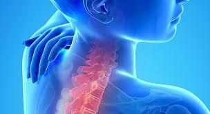 Orthopedic evaluation
